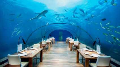 conrad-maldives-rangali-island-31710613-1493823431-ImageGalleryLightboxLarge